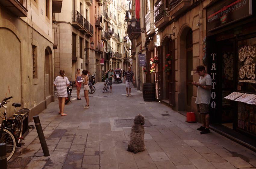Stradina nel Centro di Barcellona