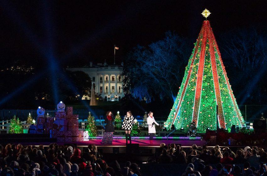 Illuminazione Albero di Natale Nazionale