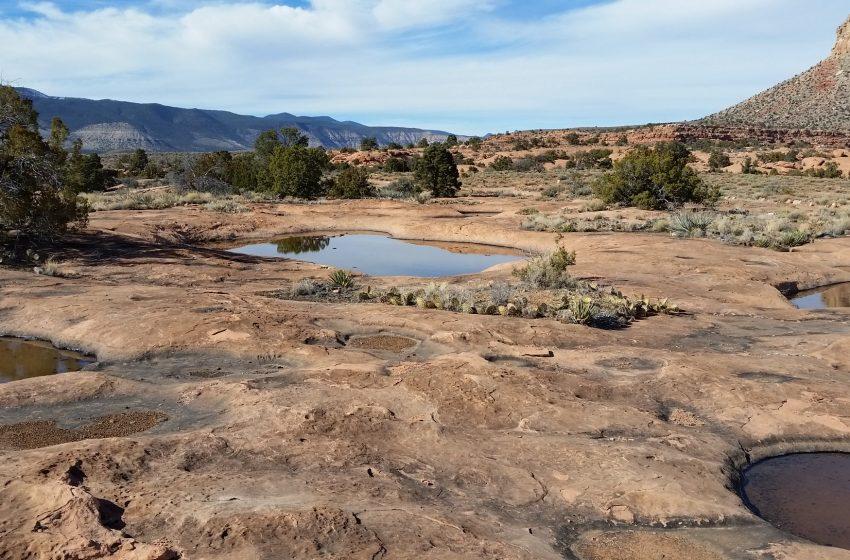 Riserve d'acqua nel Deserto